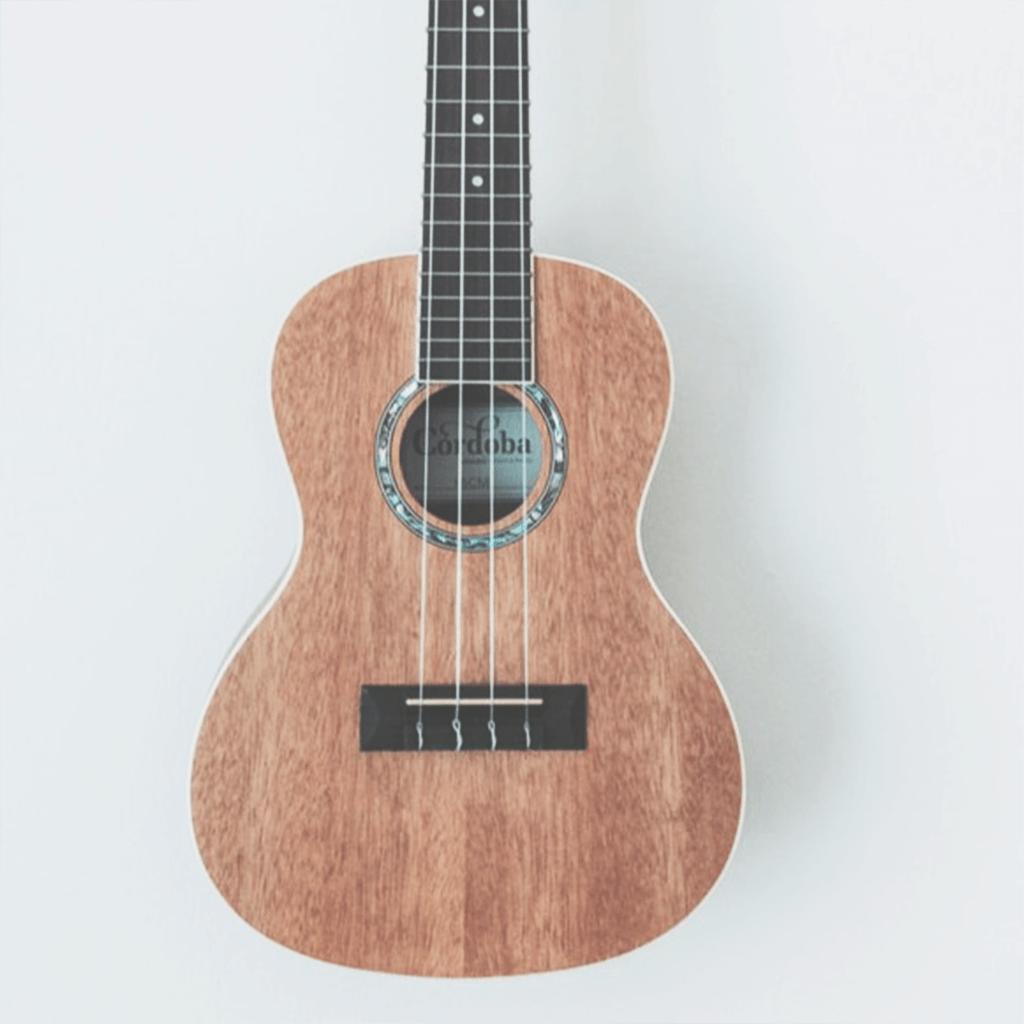 楽器の練習をするのサムネイル画像