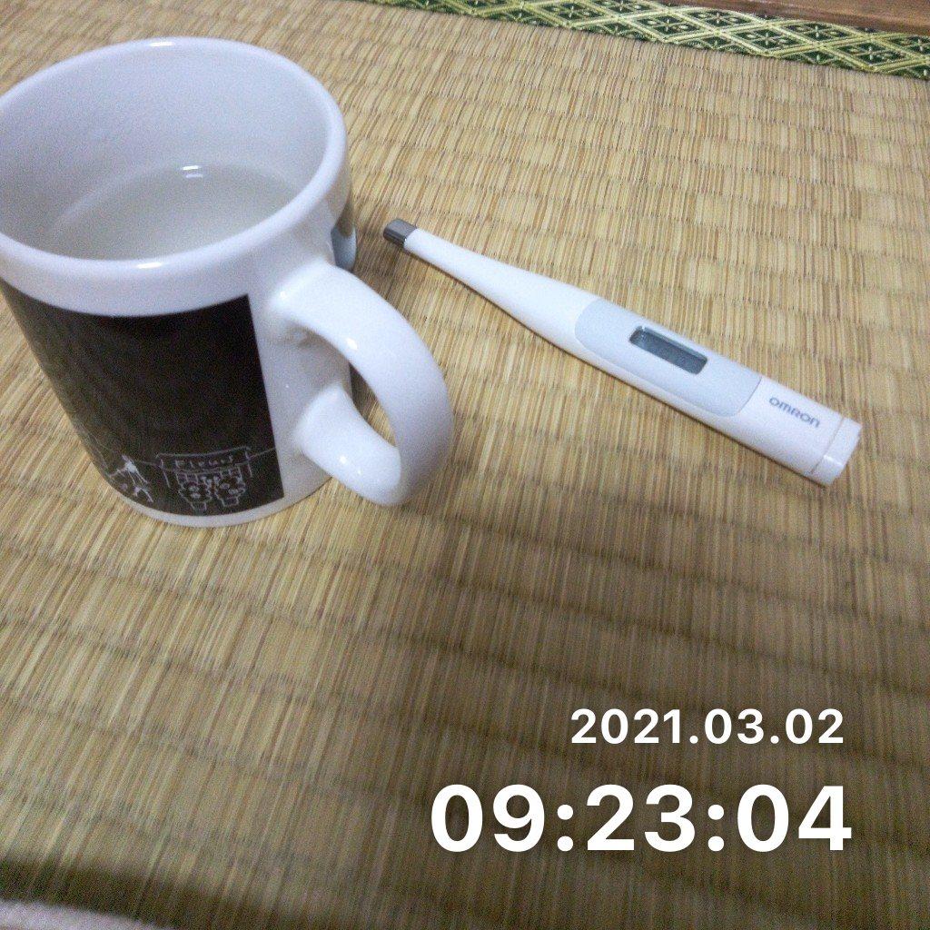 毎日朝活をするのサムネイル画像