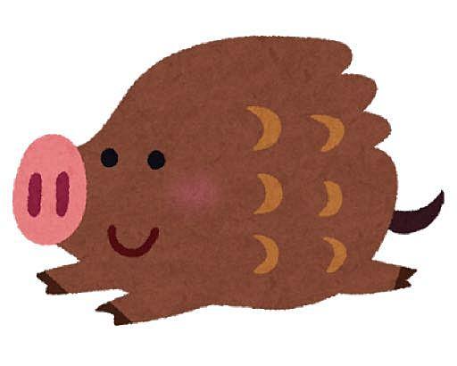 猪突猛進!さんのプロフィール画像